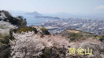 19-04-04-17-03-04-270_deco_640.jpg